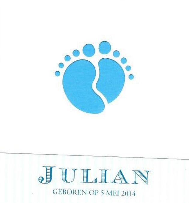 GrebbeVilt-geboortekaartje Julian