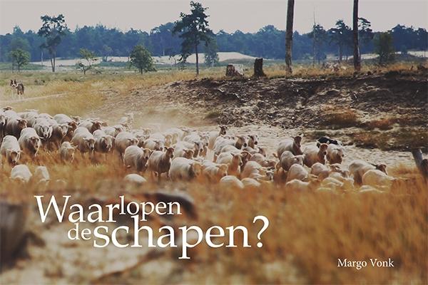Waar lopen de schapen (klein)